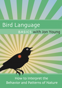 Bird Language Basics