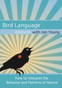 Bird Language Groups